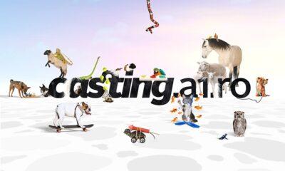 BestPet Casting antena 1
